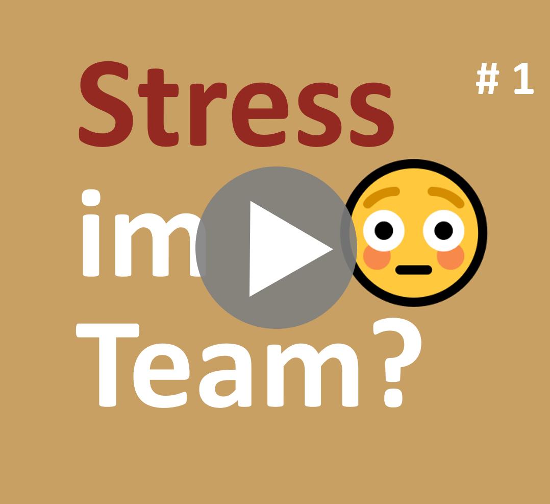 Newsletter_001_Stress-im-Team