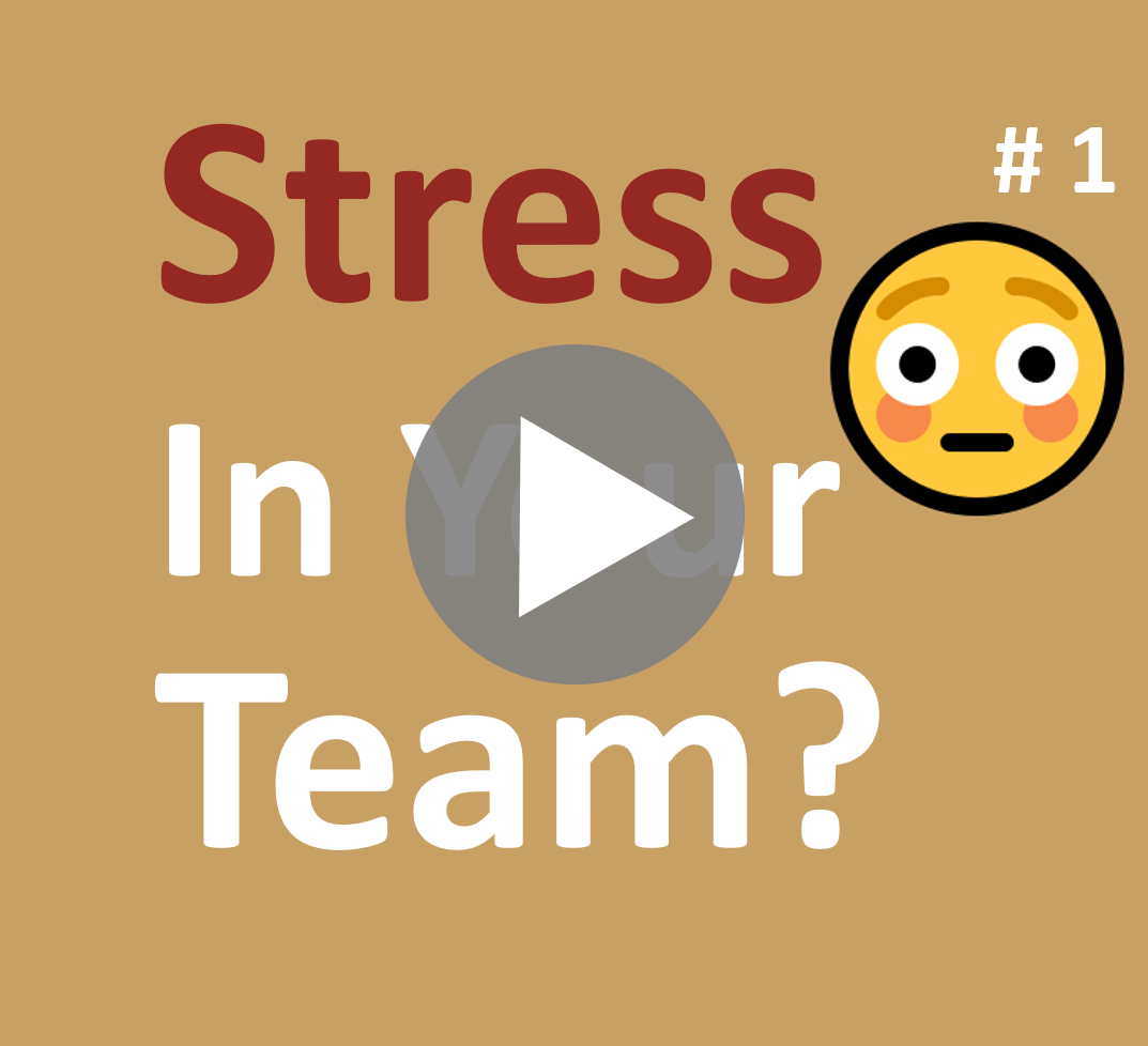 Newsletter_001_Stress-in-your-Team